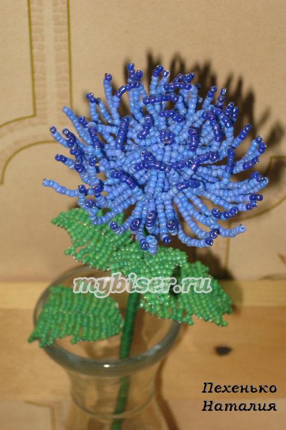 Голубая хризантема. бисероплетение.