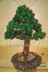 Дерево из бисера: бонсай