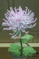thumbs c14 Хризантема розовая из бисера