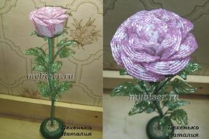 thumbs r15z Роза из бисера